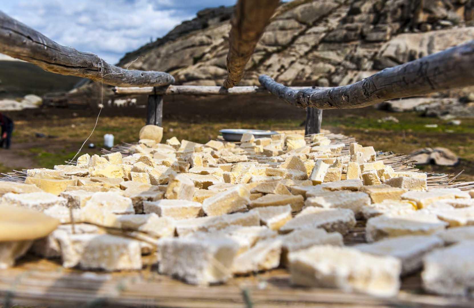 新疆旅游美食攻略之奶疙瘩與奶酪
