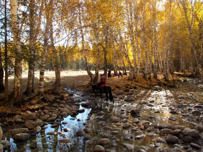 新疆喀納斯旅游必備衣物